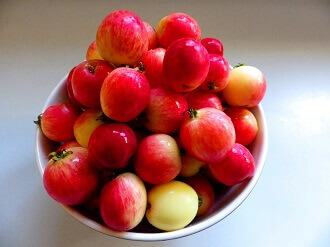 2 - crabapple jelly - crabapple in bowl